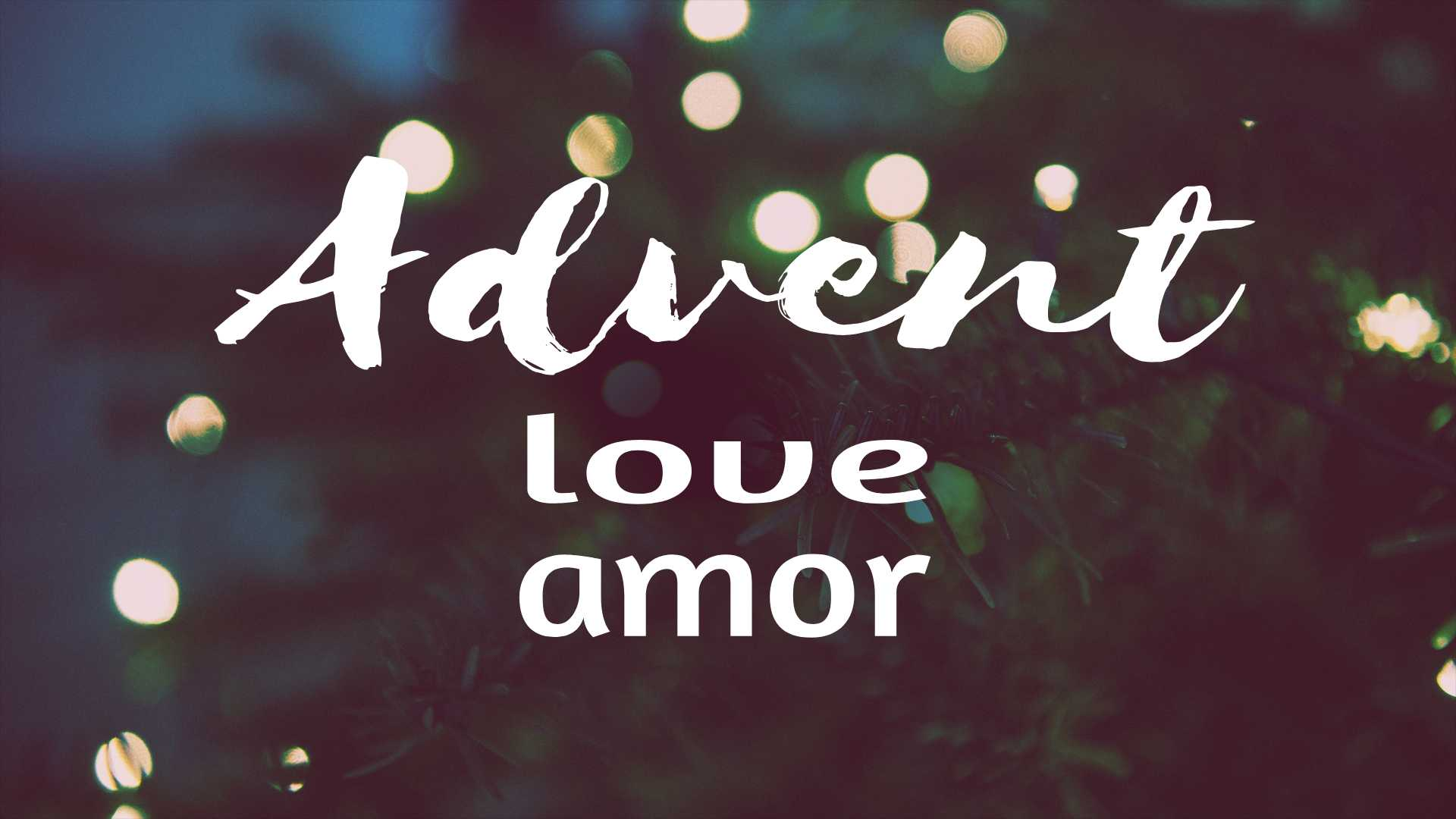 Advent – Love