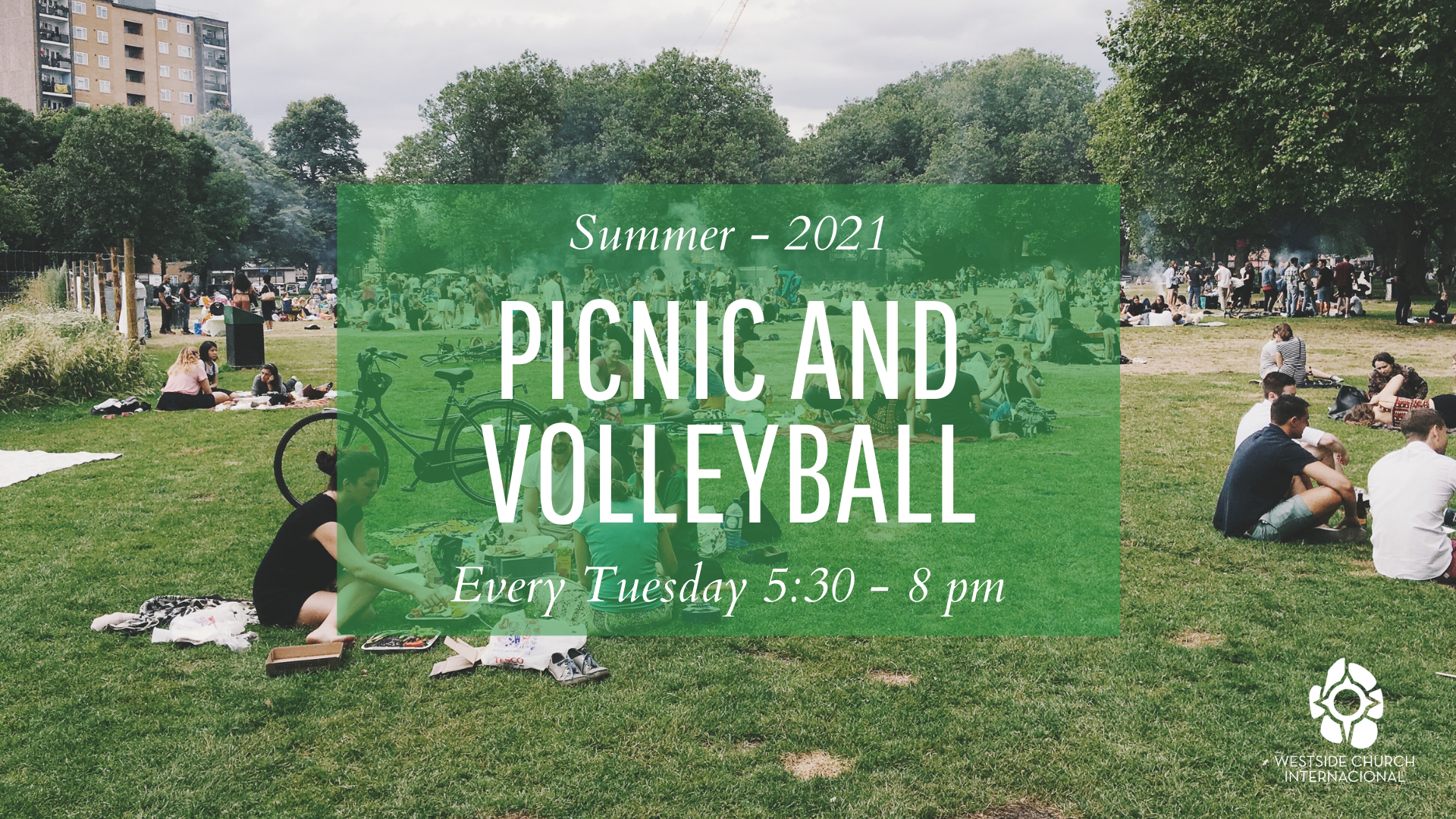 Picnic and Volleyball (2)